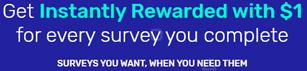 Get paid on SurveyTime