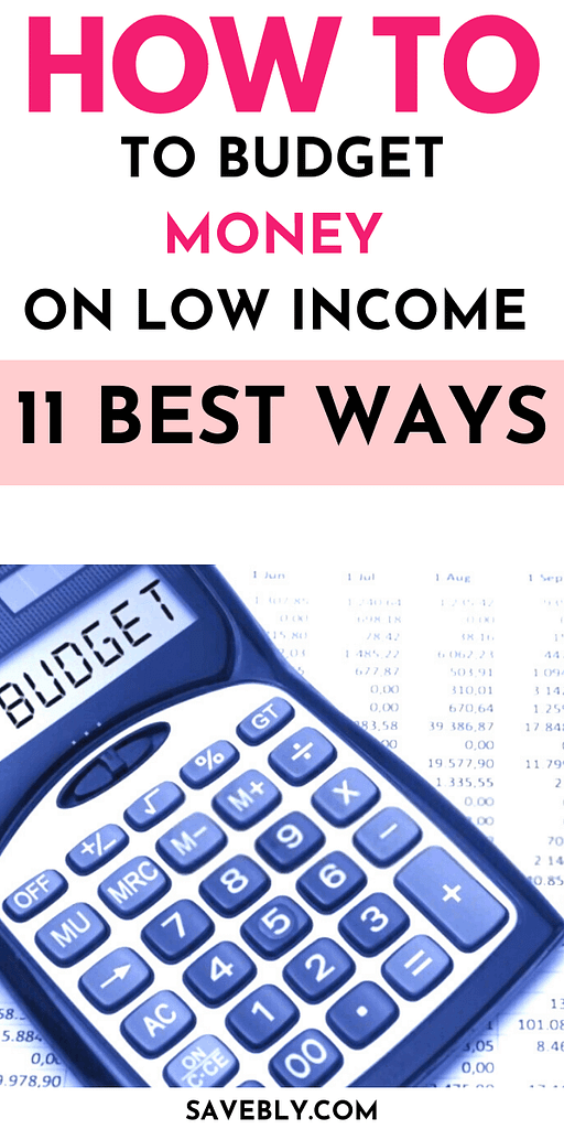 How To Budget Money On Low Income (11 Best Ways)