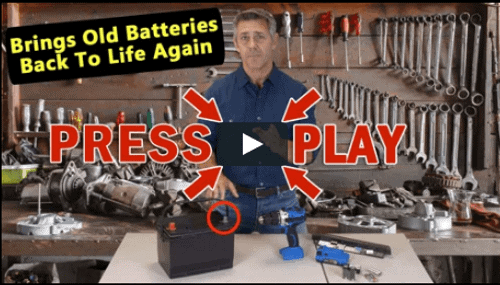 EZ Battery Reconditioning Charger